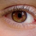 Occhio e iride