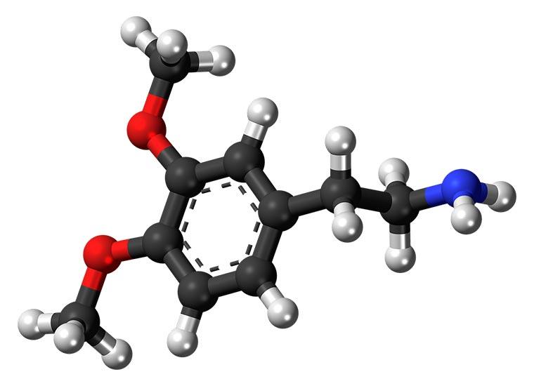 dopamina struttura molecolare