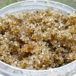 Scrub zucchero e olio