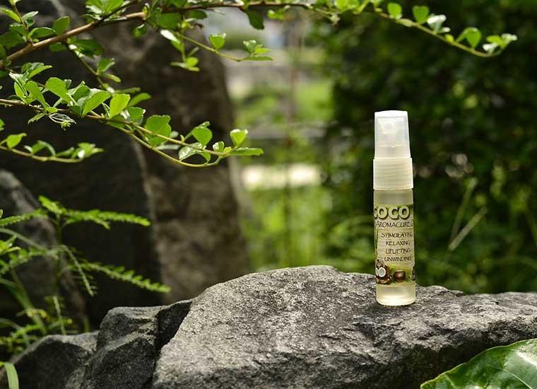 Olio di cocco per la bellezza: per pelle e capelli