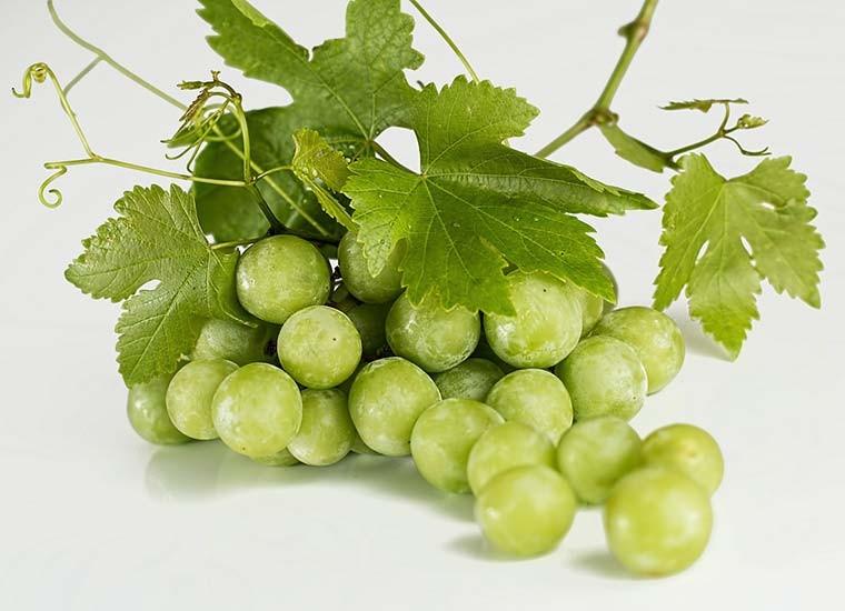 L'uva: calorie, benefici e controindicazioni