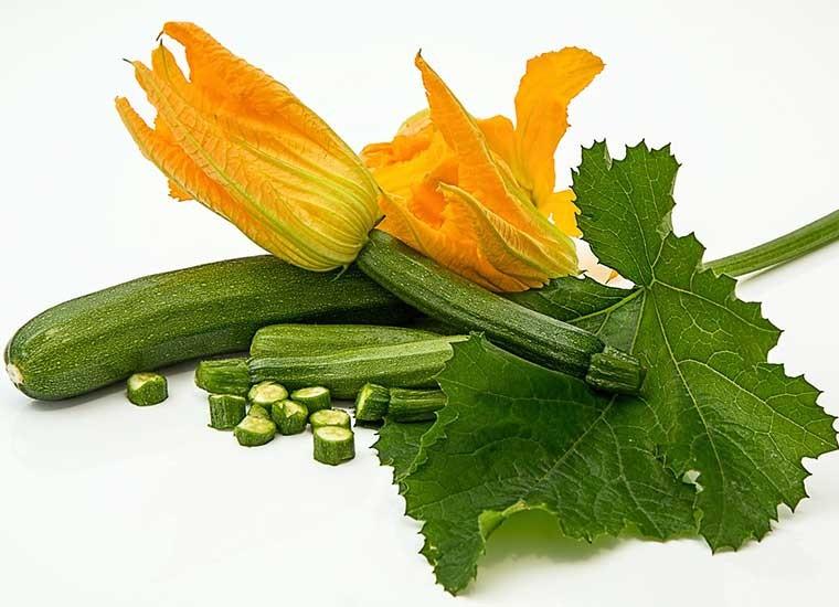 Zucchine, calorie, proprietà e benefici