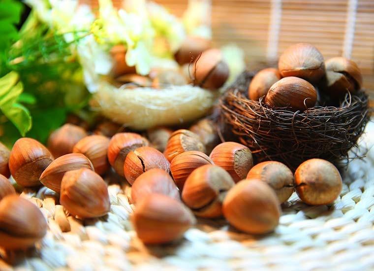 Nocciole: valori nutrizionali e benefici