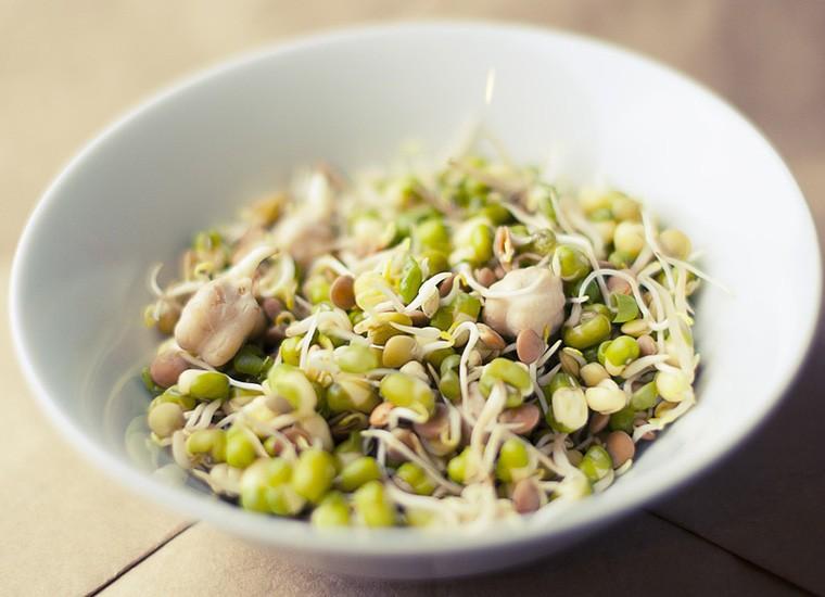 Germogli di soia: cosa sono, valori nutrizionali e benefici