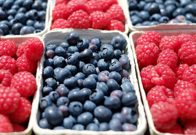 I mirtilli, frutti rossi deliziosi dalle numerose proprietà benefiche