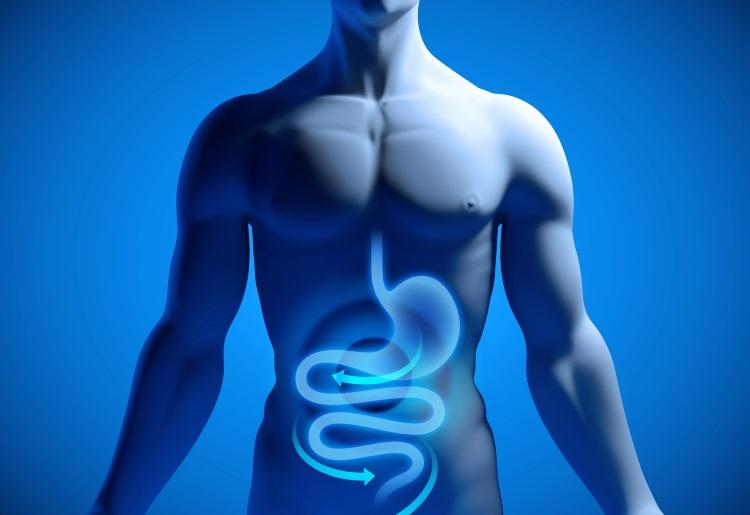 La gastroscopia per la diagnosi di patologie gastriche e duodenali