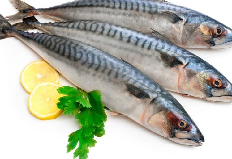 Stufi del tonno? Sostituitelo con lo sgombro, un pesce azzurro molto nutriente