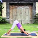 yoga braccia