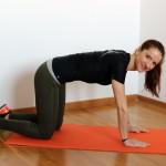 schiena muscoli