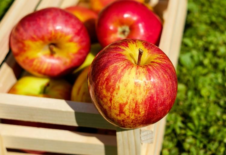 Fruttariani: seguono un regime alimentare che fa bene?