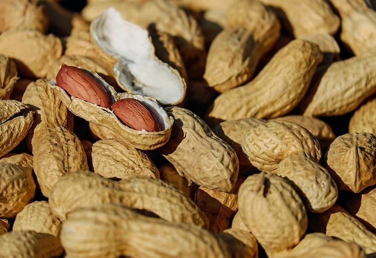 Arachidi, proprietà, calorie e valori nutrizionali