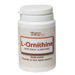 ornitina