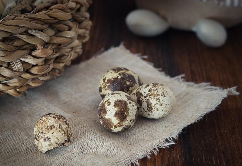 Uovo di quaglia, proprietà e valori nutrizionali