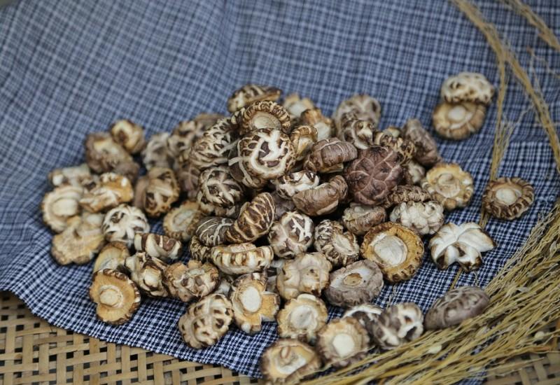 Funghi Shiitake, proprietà e valori nutrizionali