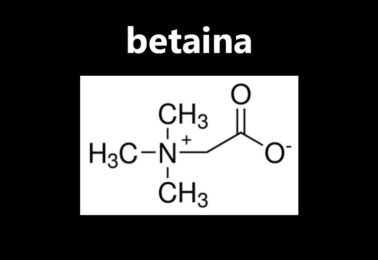 La Betaina, che cos'è, proprietà e benefici