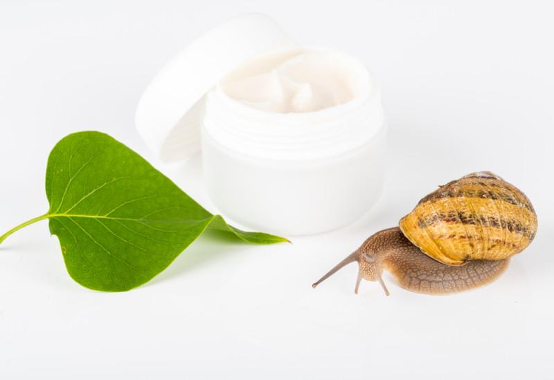 Tutte le proprietà cosmetiche della bava di lumaca